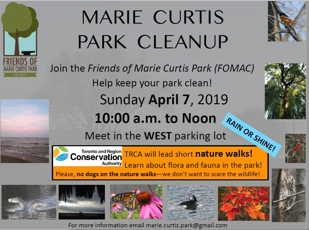 Marie Curtis Park Cleanup
